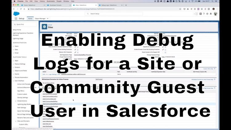 55. Enabling Debug Logs for a Site or Community Guest User in Salesforce